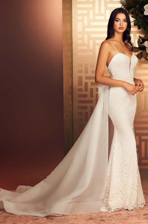 Graceful Two Piece Lace Wedding Dress - Style #4890 | Paloma Blanca