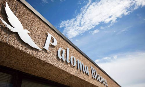 Paloma Blanca About Us Office 02
