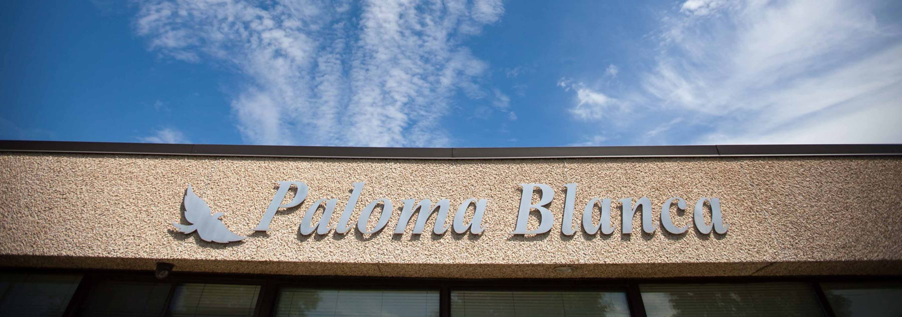 Paloma Blanca About Us Office
