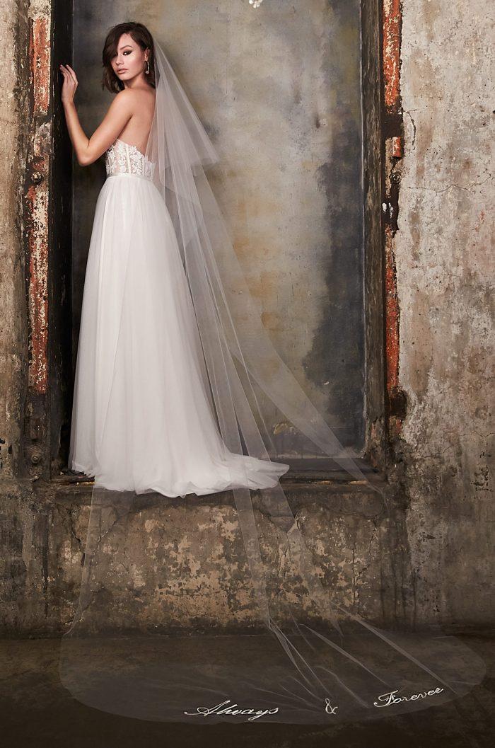 Stunning Embroidered Veil - Style #V493C | Paloma Blanca